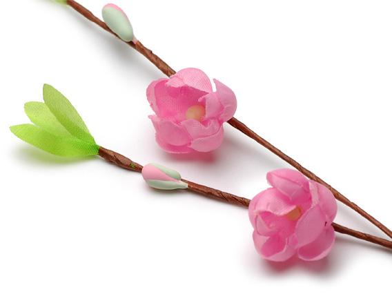 Flor de durazno ひな祭り