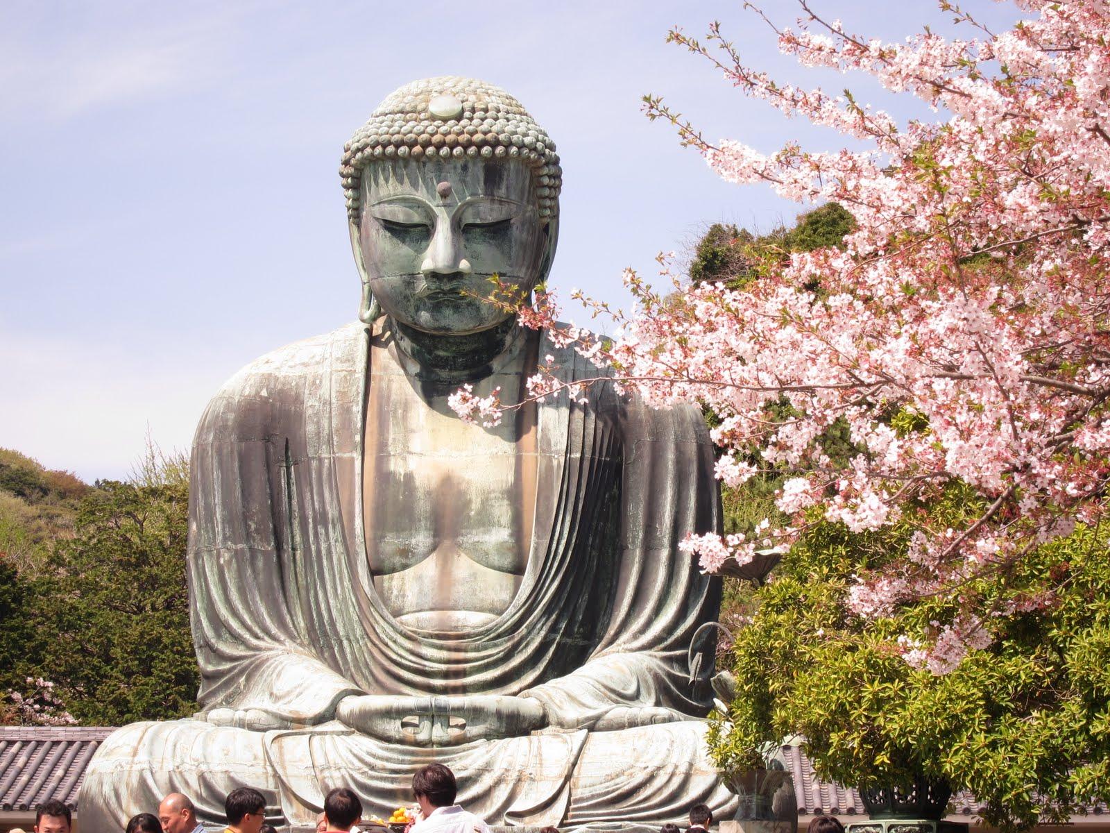 budista hanami