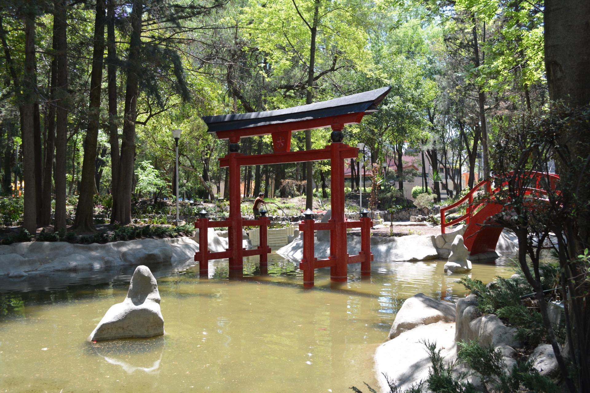 Vista del parque japonés de la CDMX Masayoshi Ohira
