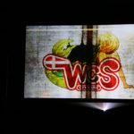 World Cosplay Summit Semifinal 179